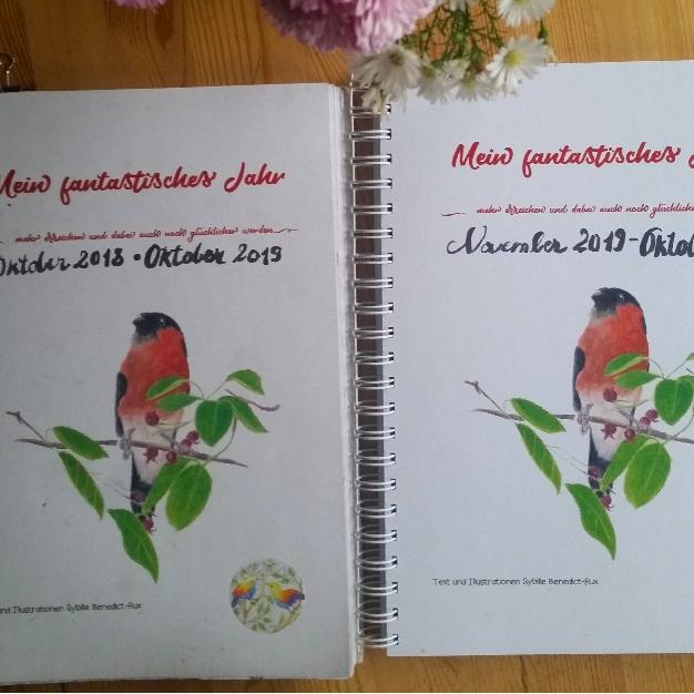 """Der Planer """"Mein fantastisches Jahr"""", links der benutzte ein Jahr alte. Rechts das neue Exemplar."""